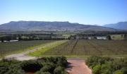 dscn0351-glen-carlou-wine-tasting